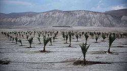 Israel é criticado por que deseja usar terras férteis em seu território